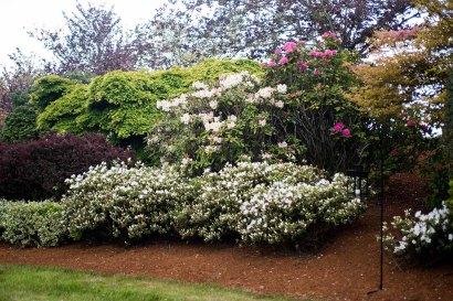 West Garden, The Wedding Meadow - Krishna Muirhead Photography