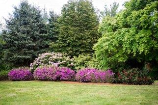 East Garden - Krishna Muirhead Photography